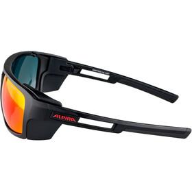Alpina Skywalsh CM+ Glasses, negro